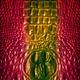 crocodile skin - PhotoDune Item for Sale