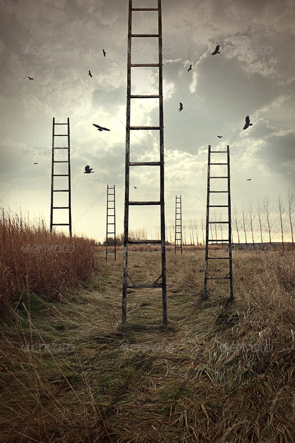 Ladders reaching to the sky in a autumn field - Stock Photo - Images