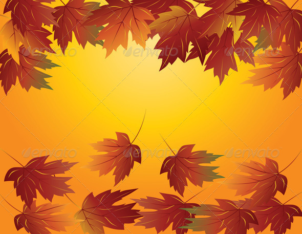 Maple Leaves in Fall Illustration - Stock Photo - Images