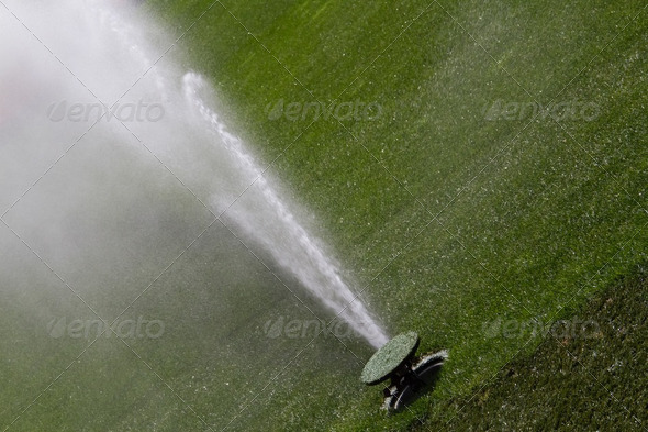 Sprinkler washing green grasses - Stock Photo - Images