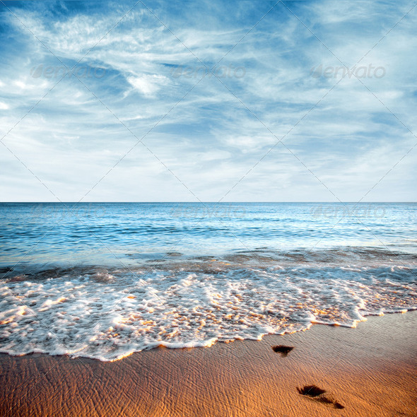 Seashore - Stock Photo - Images