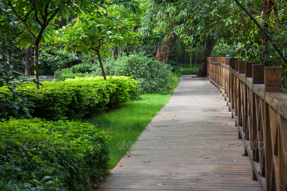 wooden footpath throught garden - Stock Photo - Images