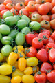 Colorful assorted tomatoes - PhotoDune Item for Sale