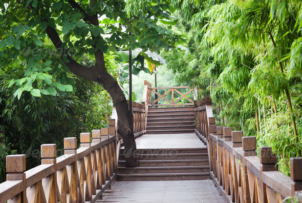 wooden footbridge throught bamboo garden - Stock Photo - Images