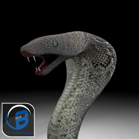 3DOcean Cobra 3373461