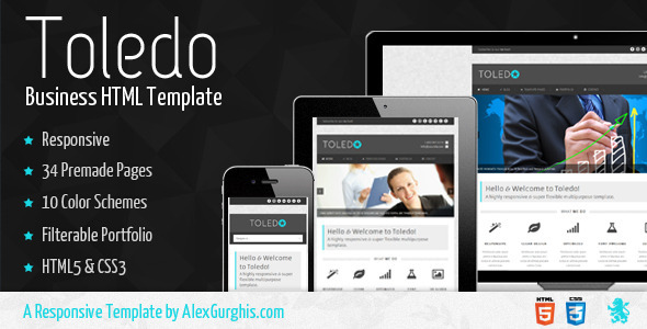 Toledo - Responsive &amp; Super Flexible Theme - Business Corporate