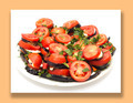 roasted eggplant with tomatoes - PhotoDune Item for Sale