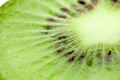kiwi as background. macro - PhotoDune Item for Sale