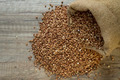 buckwheat seeds - PhotoDune Item for Sale