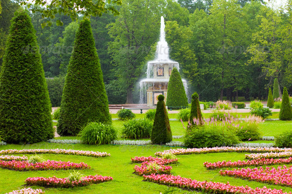 Peterhof Palace. Roman fountain of the Lower Park in the rain - Stock Photo - Images