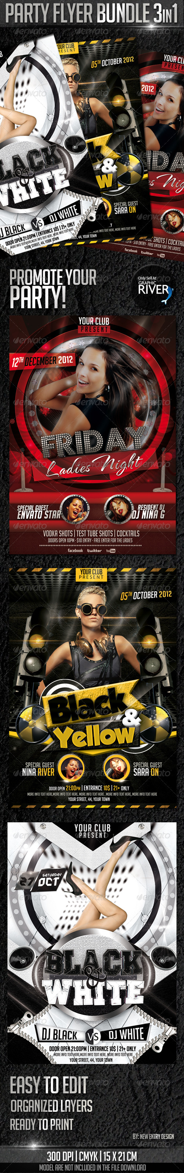 GraphicRiver Party Flyer Bundle 3in1 3410080