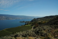 Wine Valley Canada - Okanagan Lake Wineries - PhotoDune Item for Sale