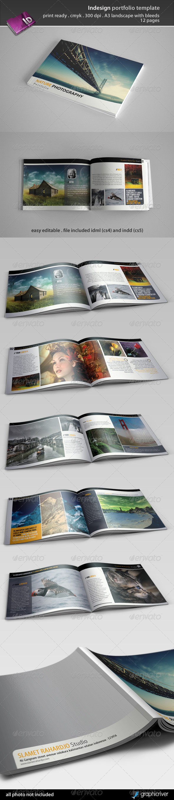 GraphicRiver Indesign Portfolio Template 3435643