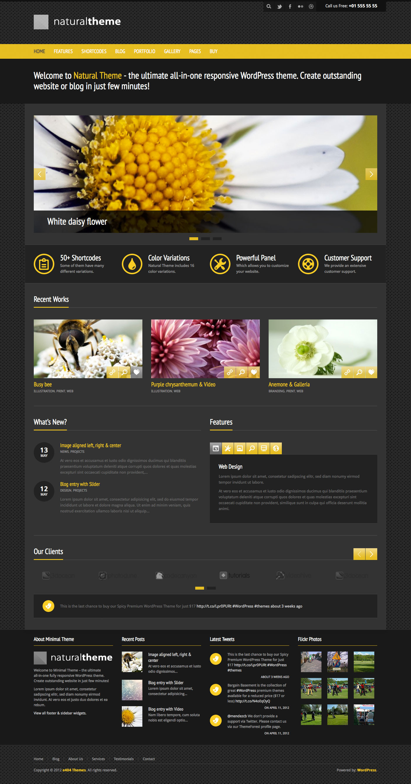 Natural - Powerful Responsive WordPress Theme - Preview of Style 3