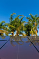 Tropical solar panels - PhotoDune Item for Sale