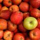 Apples - PhotoDune Item for Sale