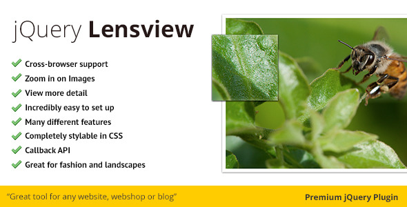 CodeCanyon jQuery Lensview Plugin 2655273