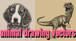 Animal drawing vectors