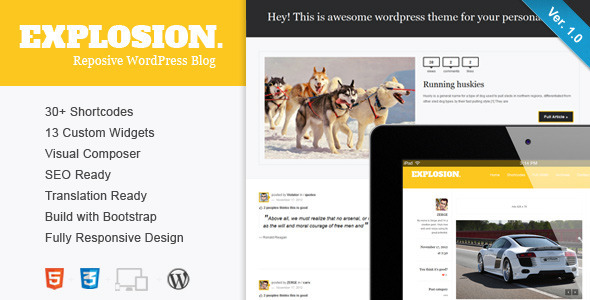 ThemeForest Explosion Responsive WordPress Blog Personal 3459155
