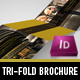Exclusive Tri-Fold Brochure - GraphicRiver Item for Sale