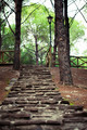 Stone Stairs in the Park - PhotoDune Item for Sale