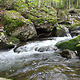Forest Mountain Stream - VideoHive Item for Sale