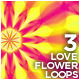 Love Flower Loops (3-Pack) - VideoHive Item for Sale