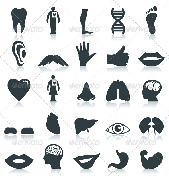 GraphicRiver Body Part Icons 3488688