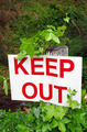 keep out sign - PhotoDune Item for Sale