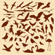 Bird Silhouettes - GraphicRiver Item for Sale