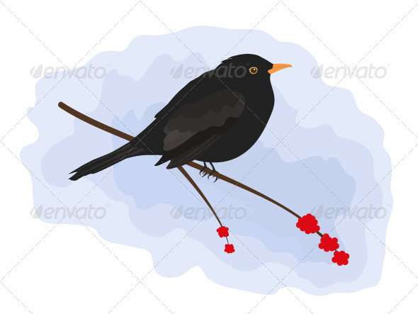 GraphicRiver Blackbird 3510939