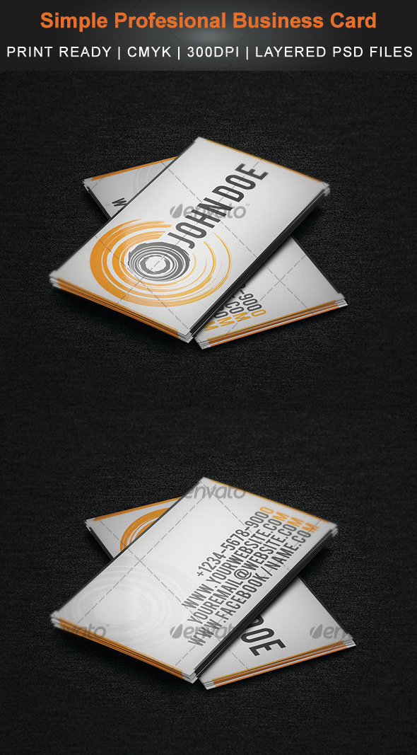 GraphicRiver Simple Profesional Business Card 3521511