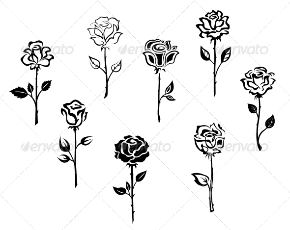 GraphicRiver Rose Flowers 3525077