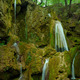 Magic Waterfall in the forests of Bulgaria - PhotoDune Item for Sale