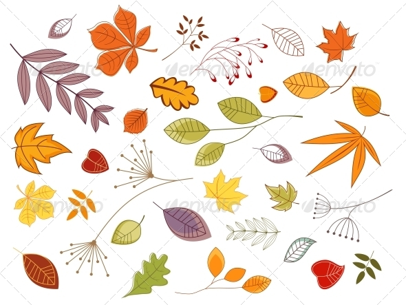 GraphicRiver Autumnal Leaves and Plants 3533576
