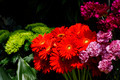 Flowers on a florist stall - PhotoDune Item for Sale