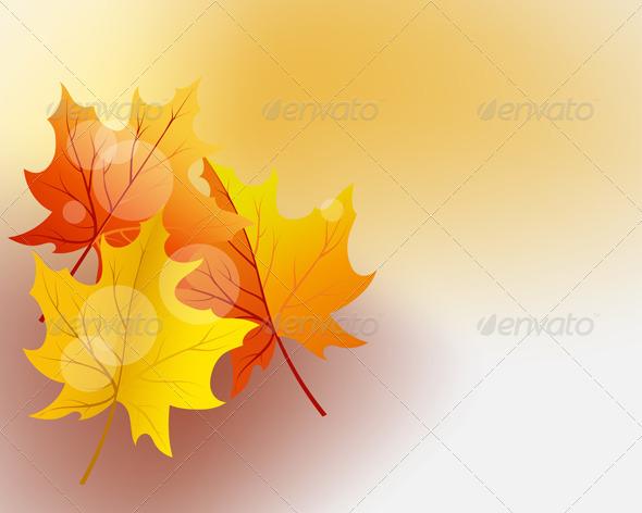 GraphicRiver Autumn Maples 3536313