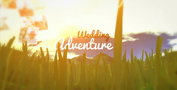 Wedding Adventure VideoHive  Video Displays  Special Events 3525505