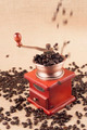 Coffee Beans in Grinder - PhotoDune Item for Sale