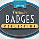 Paper Textured Badges - GraphicRiver Item for Sale