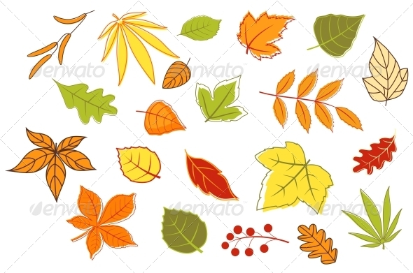 GraphicRiver Colorful Autumn Leaves and Plants 3561754