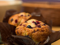traditional blackcurrant muffins - PhotoDune Item for Sale