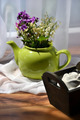 Springflowers in a teapot 1 - PhotoDune Item for Sale