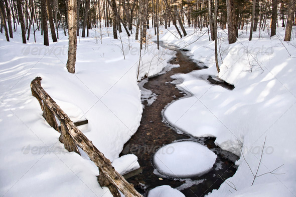 Winter Stream - Stock Photo - Images