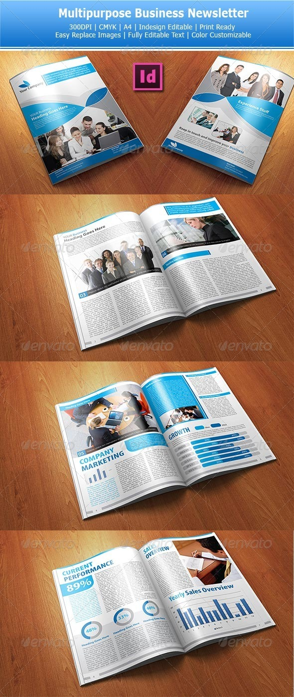 GraphicRiver Multipurpose Business Newsletters 3535260