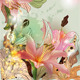 Lilies Composition - GraphicRiver Item for Sale