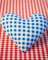 Blue heart on gingham tablecloth - PhotoDune Item for Sale