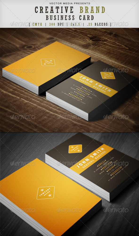 GraphicRiver Creative Brand Business Card 3593186