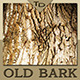 Old Tree Bark - GraphicRiver Item for Sale