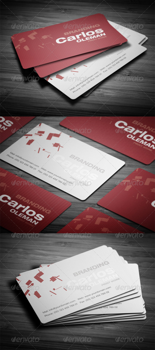 GraphicRiver Professional Name Card 3607608